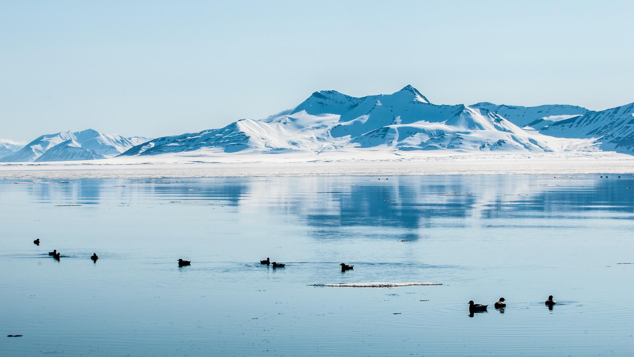 Eskmanfjorden, Svalbard